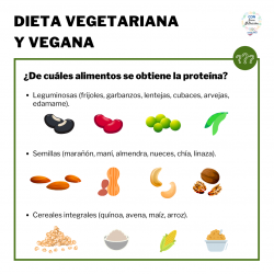 Dieta vegetariana 2